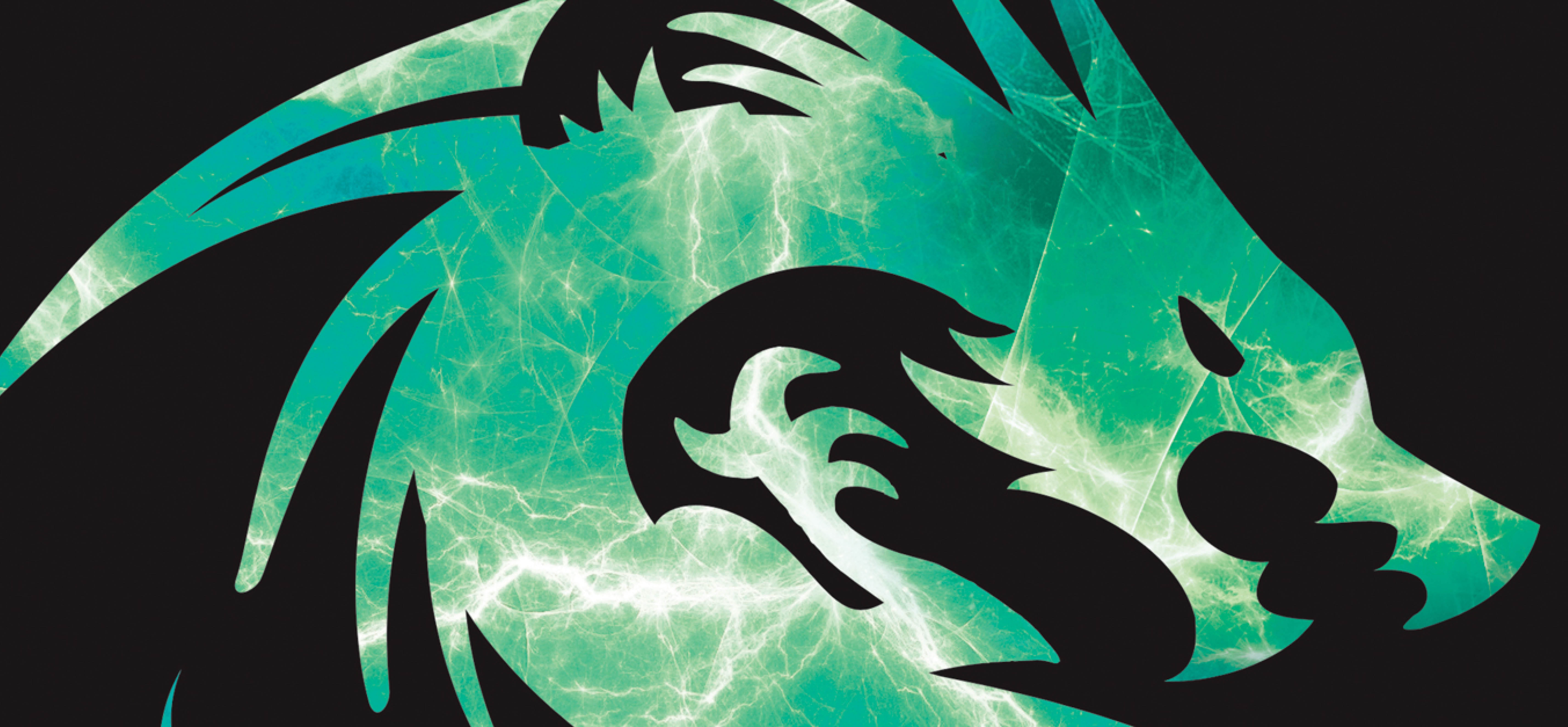 Green Dragons Banners Background Image Banners
